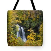 Dry Falls - Highlands, Nc Tote Bag