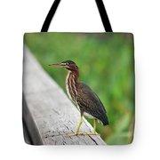 81- Green Heron Tote Bag