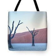 Sossusvlei - Namibia Tote Bag