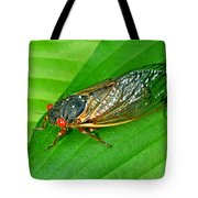 17 Year Periodical Cicada Tote Bag