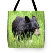 American Black Bear Yellowstone Usa Tote Bag