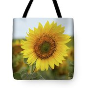 Nice Sunflower Tote Bag