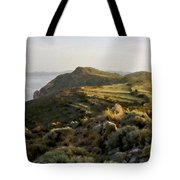 Plan E Landscape Tote Bag