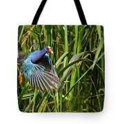 Purple Gallinule Tote Bag