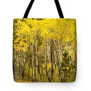 Rocky Mountain Autumn Tote Bag