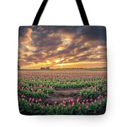180 Degree View Of Sunrise Over Tulip Field Tote Bag