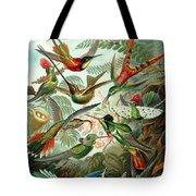 1899 Hummingbird Species Art Forms Of Nature Print Tote Bag