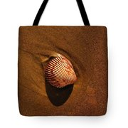 Beach Shell Tote Bag