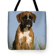 Boxer Puppy Tote Bag