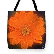 Orange Gerber Tote Bag