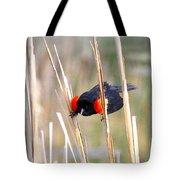 1911 - Red-winged Blackbird Tote Bag