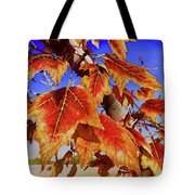 #199 Red Maple Tote Bag