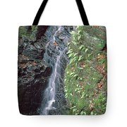1b6353 Falls On Sonoma Mountain Tote Bag