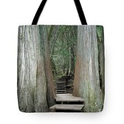 1m2623 Giant Cedars Boardwalk Tote Bag by Ed Cooper Photography