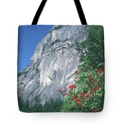 1m2931 Grand Wall Stawamus Chief With Red Elderberry Tote Bag by Ed Cooper Photography