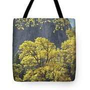 1m6610 Middle Cathedral Rock In Autumn Tote Bag