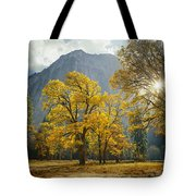 1m6611-oak Trees And Middle Cathedral Rock In Autumn Tote Bag