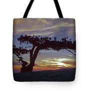 1m6704 Famous Yosemite Jefferey Pine Ca Tote Bag by Ed Cooper Photography