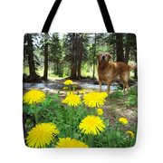 1st Trip Of The Summer Tote Bag