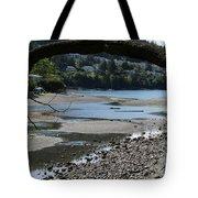 06-05-16 Tote Bag