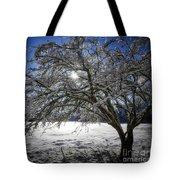 A Winter's Tale Tote Bag