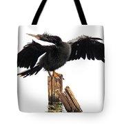 Aningha Tote Bag