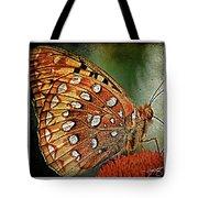 Aphrodite Fritillary 1 Tote Bag