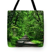 Appalachian Trail In Maryland Tote Bag