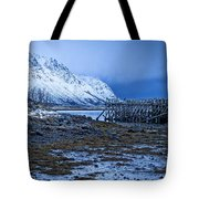 Arctic Reflections Tote Bag