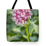 Asclepias Flower Tote Bag
