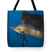 Atlantic Sailfish Istiophorus Albicans Tote Bag