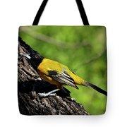 Audubon Oriole Tote Bag