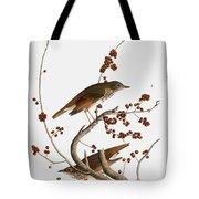 Audubon: Thrush Tote Bag