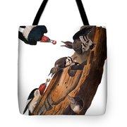 Audubon: Woodpecker Tote Bag
