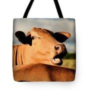Australian Cows Tote Bag