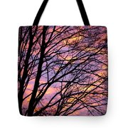 Autumn Sky Tote Bag by Konstantin Dikovsky