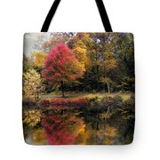 Autumn's Mirror Tote Bag