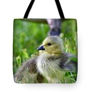 Baby Goose Chick Tote Bag