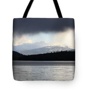 Balance In Nature Tote Bag