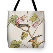 Bay Breasted Warbler Tote Bag