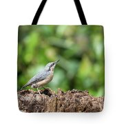 Beautiful Nuthatch Bird Sitta Sittidae On Tree Stump In Forest L Tote Bag