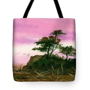 Beautiful Shore Tote Bag