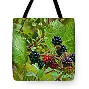 Berries In Vicente Perez Rosales National Park Near Puerto Montt-chile  Tote Bag