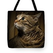 Big Cat On Chair Tote Bag