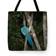 Birds From Coba Tote Bag