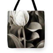 Black And White Tulip Tote Bag