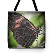 Brush-footed Butterfly Tote Bag