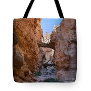Navajo Trail Natural Bridge Tote Bag