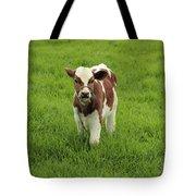 Calf In A Pasture Tote Bag