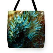 Carpet Anemones Tote Bag